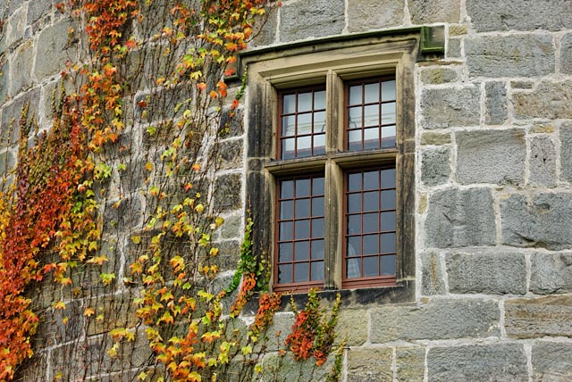Window at Chirk Castle