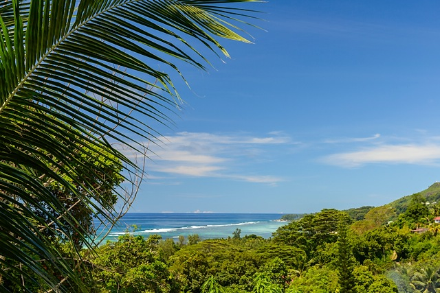 view from Albizia Lodge Reef Estate, Mahe, Seychelles