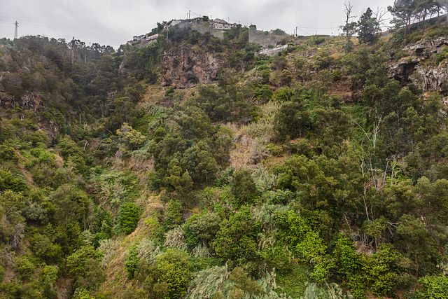 from Botanical Garden Cable Car, Madeira
